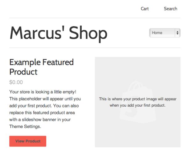 Shopify preview