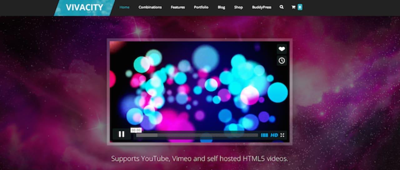 Vivacity WordPress paid theme