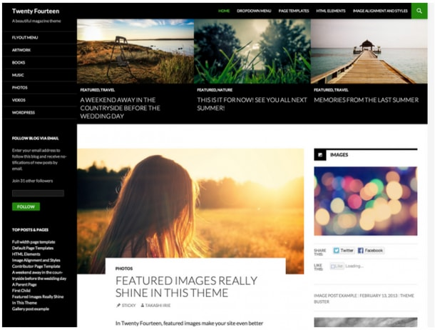 Wordpress theme 2014
