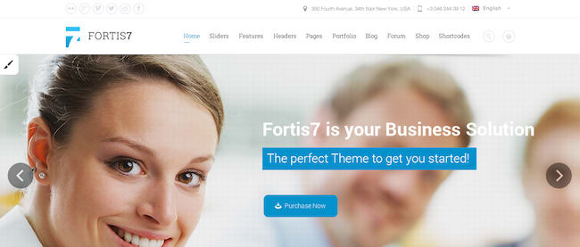 Fortis 7 Paid WordPress Theme