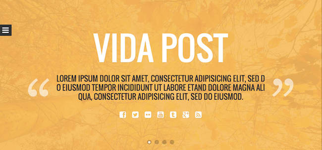 Vida Post WordPress theme