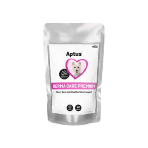 APTUS DERMA CARE PREMIUM TYGGEBIT, 60 STK
