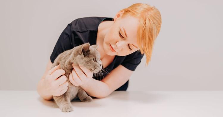 Kattebitt – ingenting å spøke med