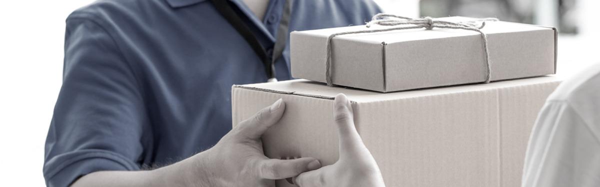 Frakt og leveringsbetingelser