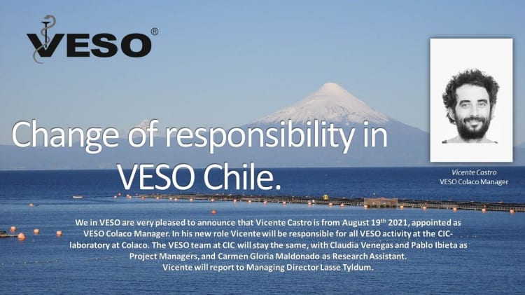 Changes of responsibility in VESO Chile