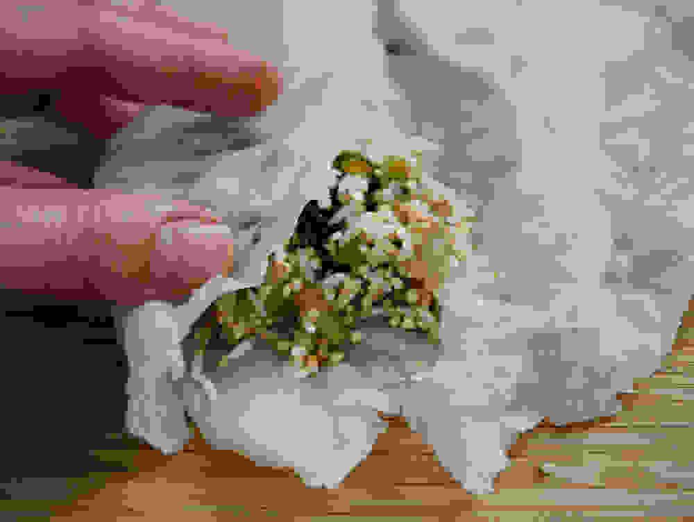 staffing a cabbage leaf