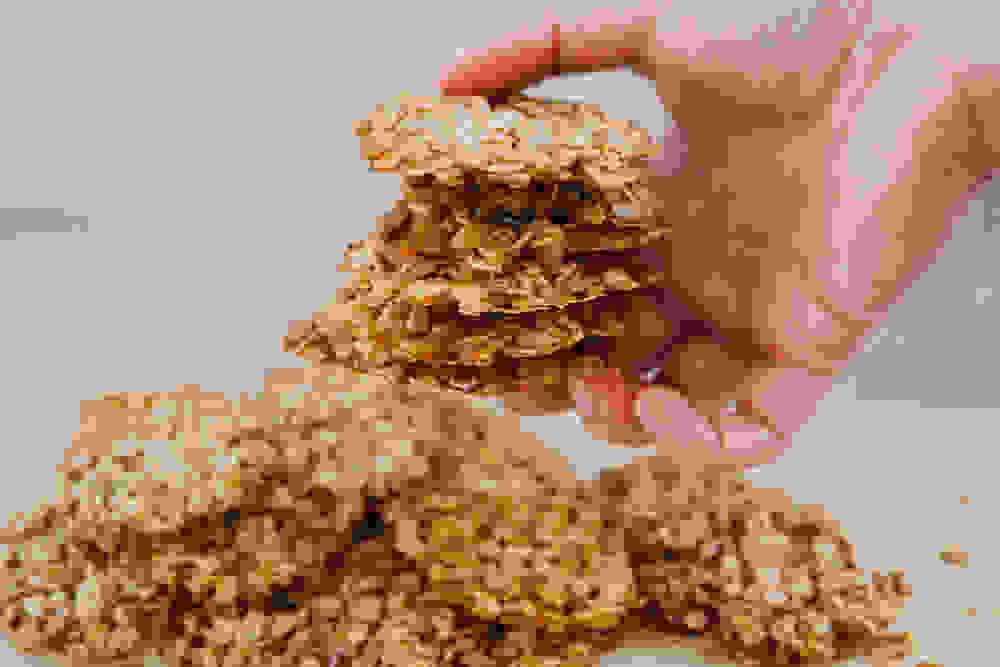 a stack of crispy oatmeal cookies