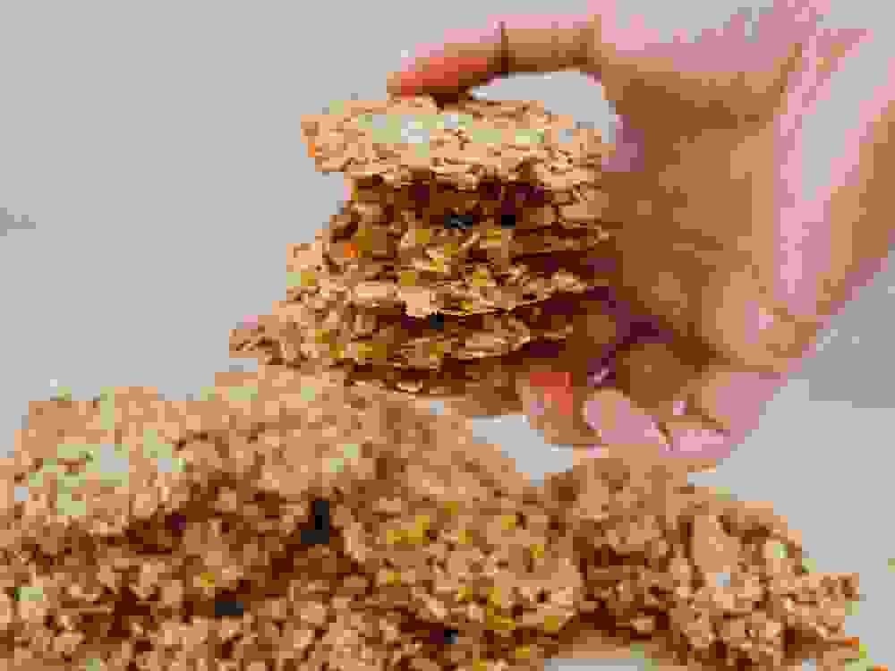 a stack of crispy oatmeal cookies