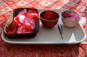 Transferring & sorting rose petals using tweezers