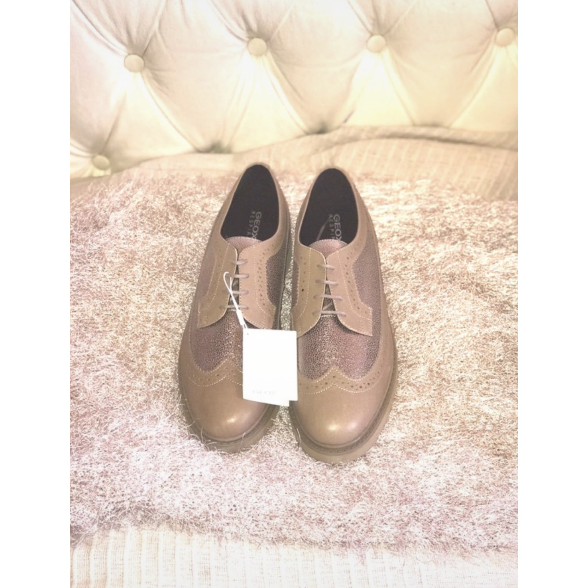 Chaussures à lacets  GEOX Taupe