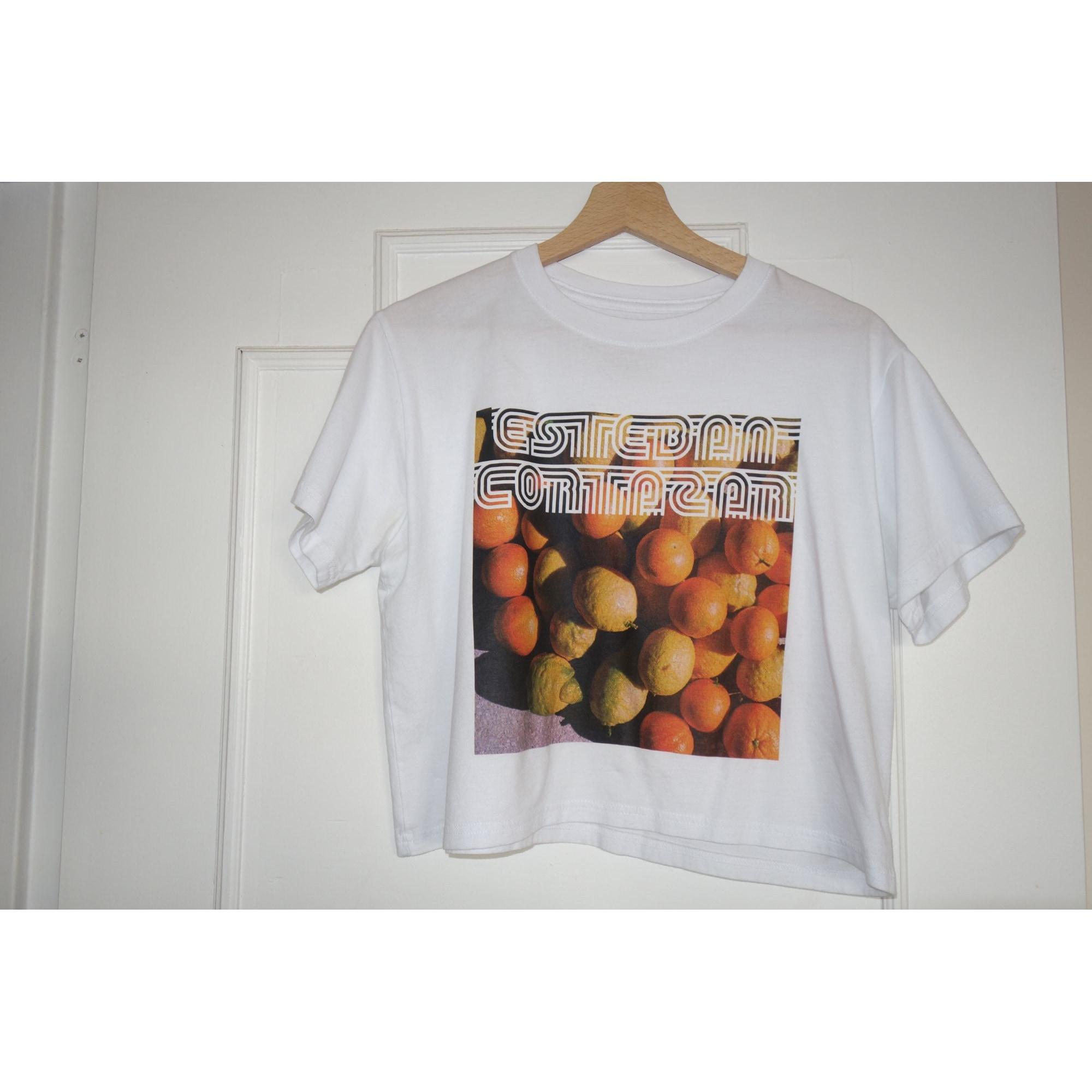 Top, tee-shirt ESTEBAN CORTAZAR Multicouleur