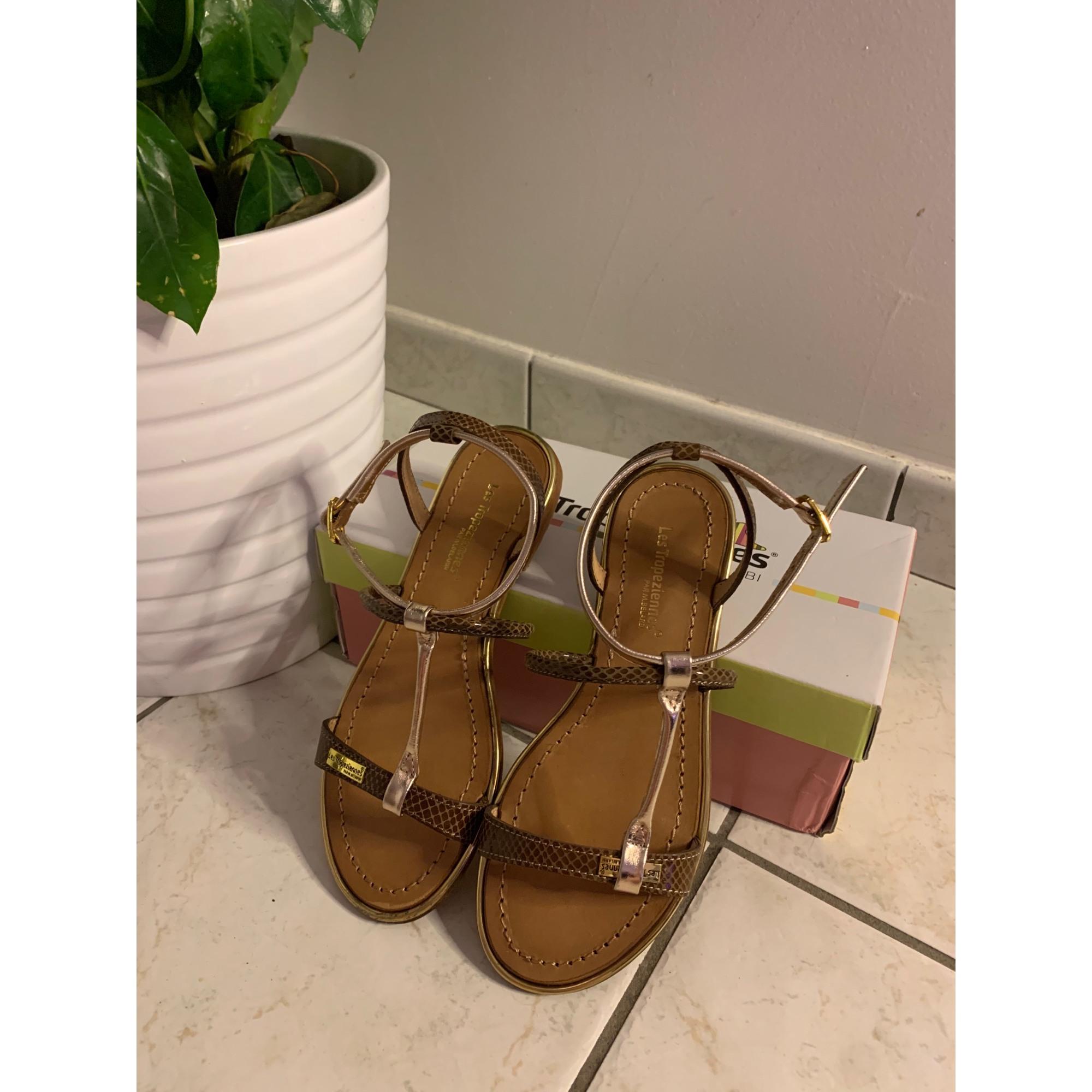 Sandales plates  LES TROPÉZIENNES PAR M. BELARBI Marron