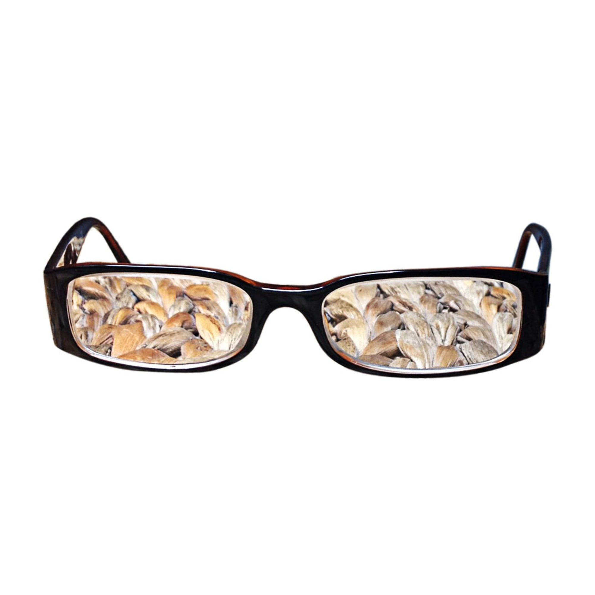 Eyeglass Frames CHANEL Brown