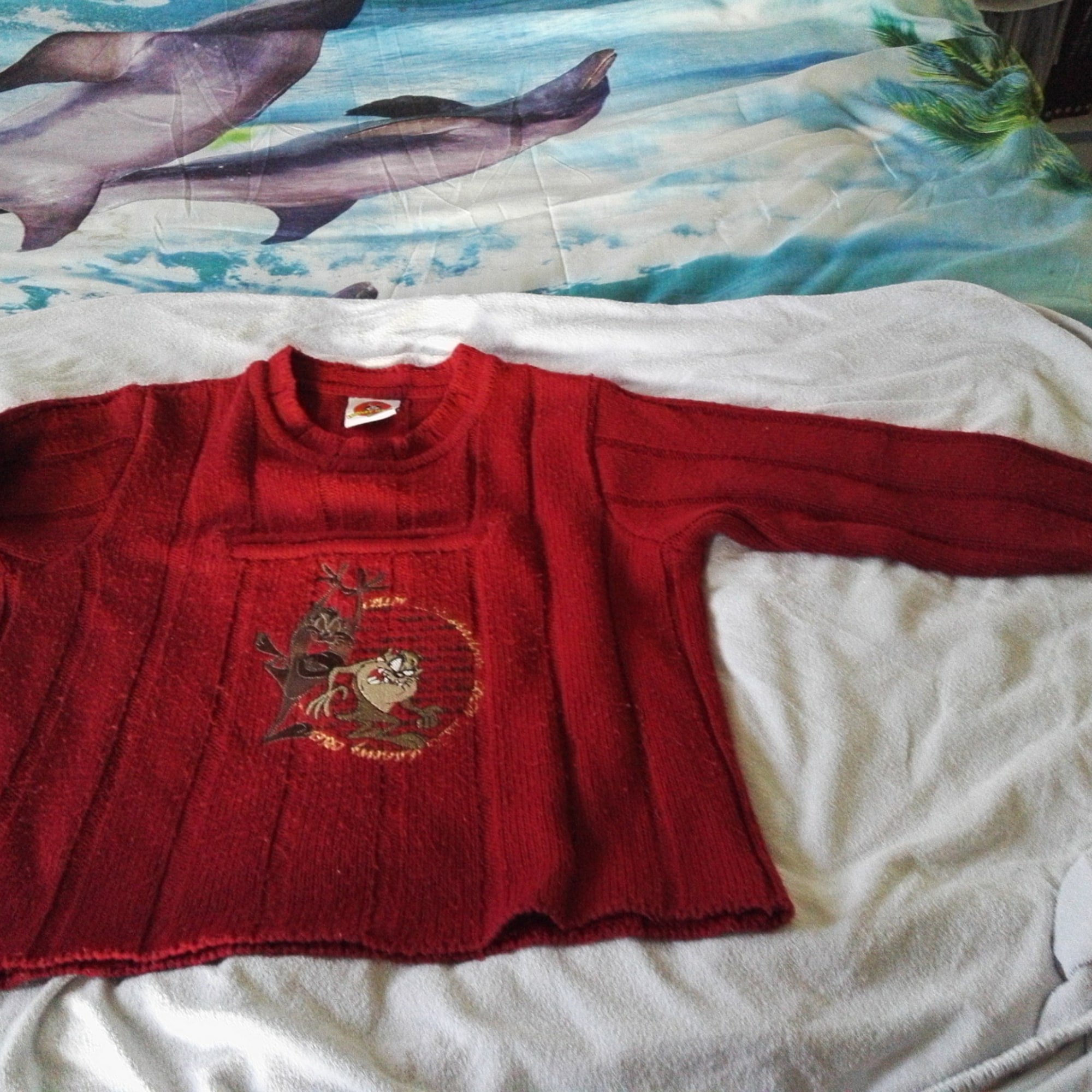 Pull LOONEY TUNES Rouge, bordeaux