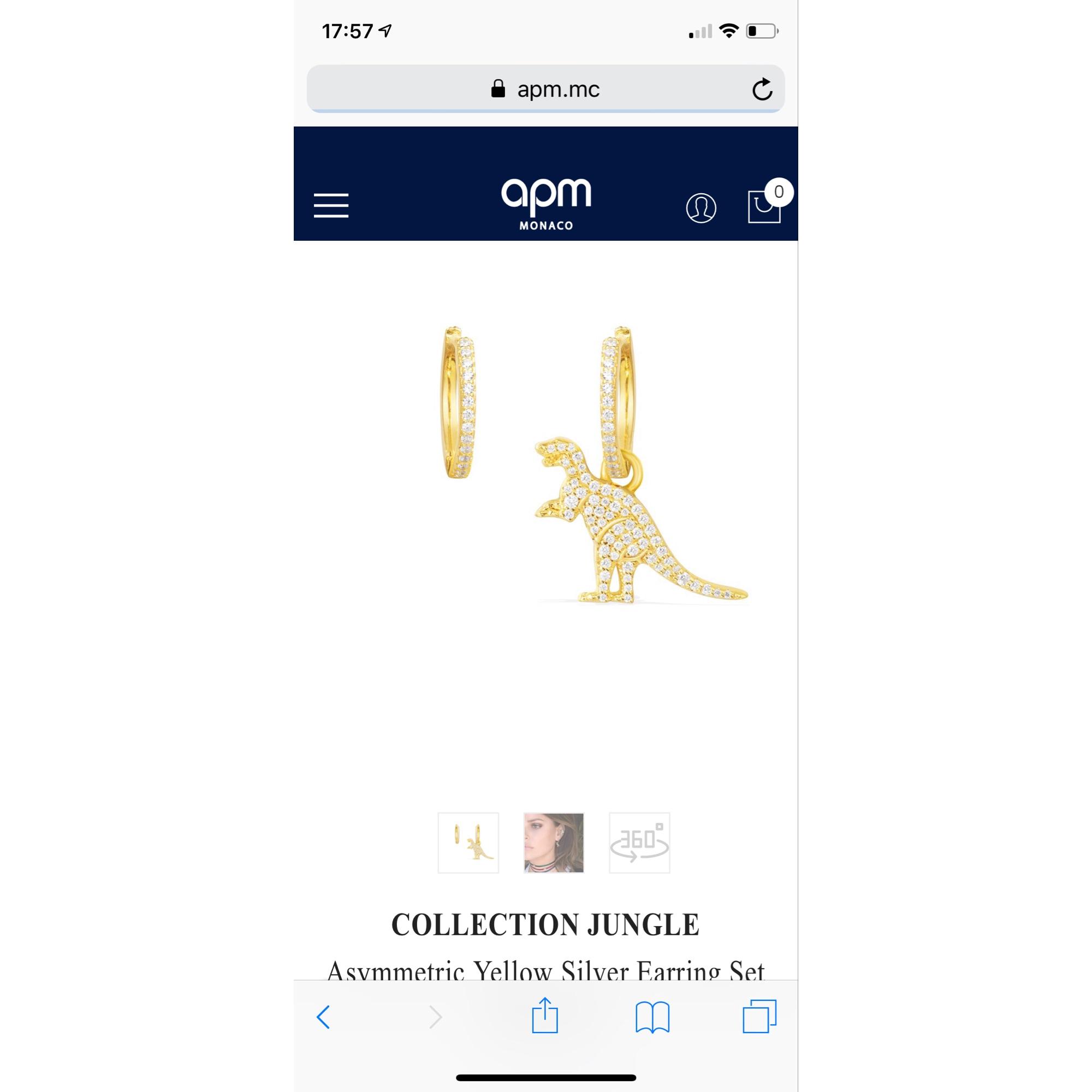 Boucles d'oreille APM argent doré