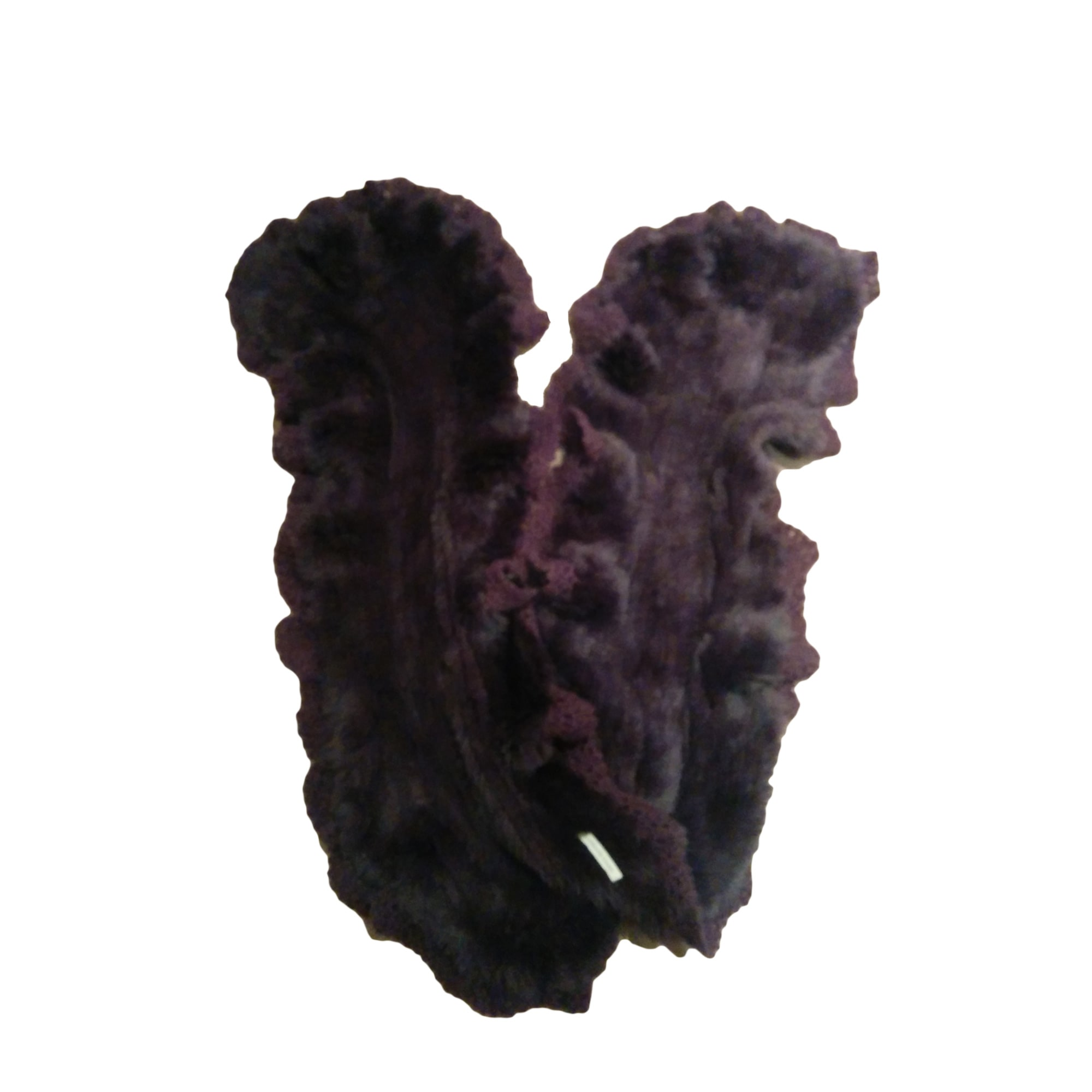 Echarpe GERARD DAREL Violet, mauve, lavande
