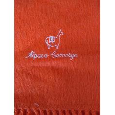 Echarpe Alpaca Camargo  pas cher