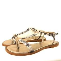 Sandales plates  Nimal  pas cher