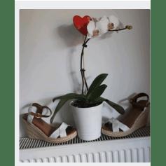 Sandales compensées Naf Naf  pas cher