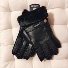 Handschuhe Chevignon