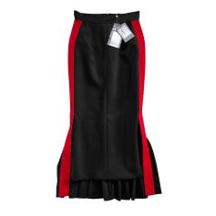 Maxi Skirt Alexander McQueen
