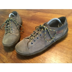 Lace Up Shoes Caterpillar