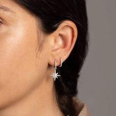 Earrings APM