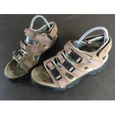 Sandals Cat