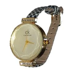 Montre au poignet Calvin Klein  pas cher