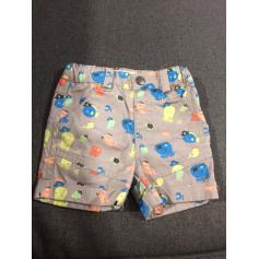 Shorts Kitchoun