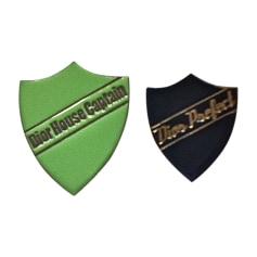 Pin DIOR Green