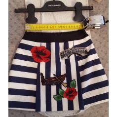Skirt DOLCE & GABBANA Multicolor