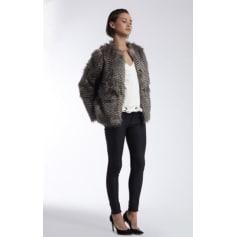 Manteaux   Vestes Morgan Femme   articles tendance - Videdressing 7c813d76fc44