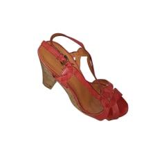 Sandales compensées ASH plusieurs couleurs