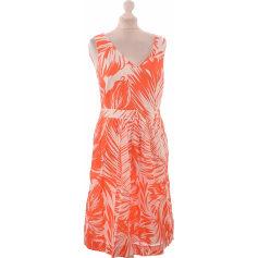Robes Caroll Femme   articles tendance - Videdressing 0aa649b32ba