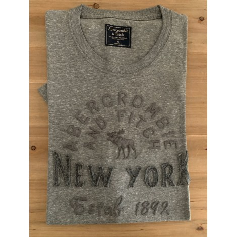 Tee-shirt ABERCROMBIE & FITCH Gris, anthracite