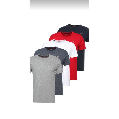 Tee-shirt HOLLISTER 5 couleurs