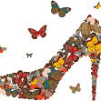 Papillon2526