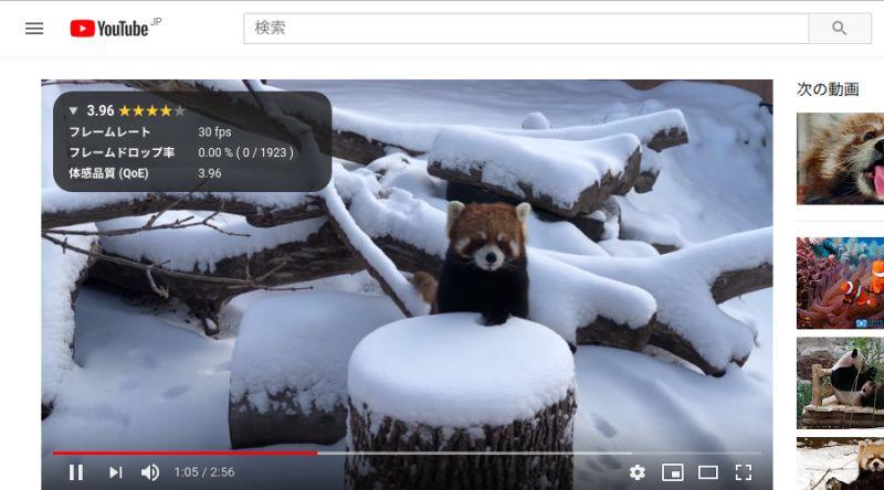 YouTube 計測画面 (詳細)