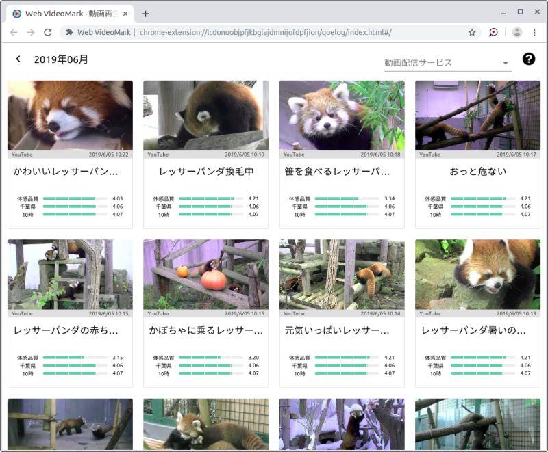 Web VideoMark 計測結果画面