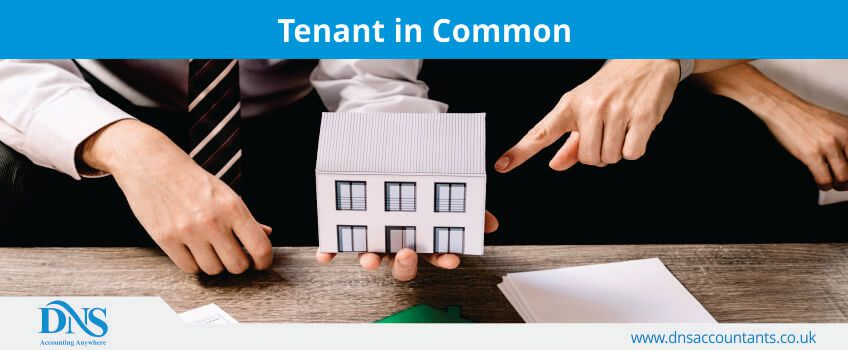What Is Tenant In Common Agreement Dns Accountants