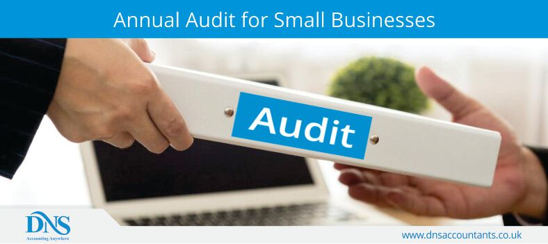 Annual Audit for Small Businesses