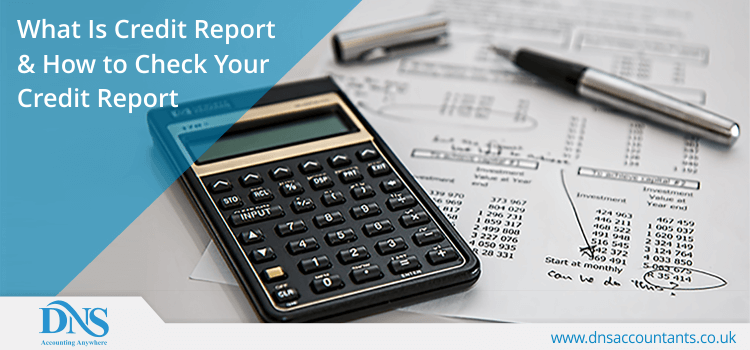 What is Credit Report & How to Check Your Credit Report