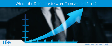 What is the Difference between Turnover and Profit ?