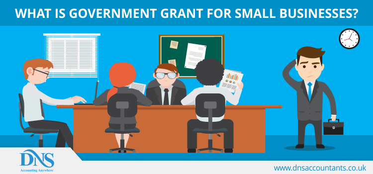 What is Government Grant for Small Businesses?