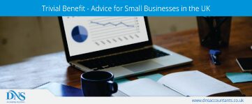 Trivial Benefit an Advice for Small Businesses
