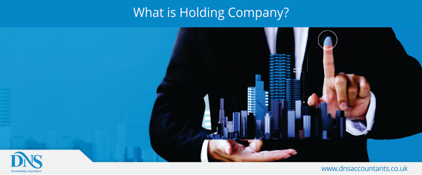 What is Holding Company?
