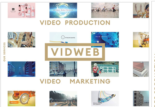 VIDWEB パンフレット