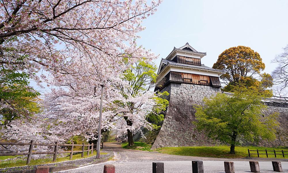 Kumamoto Castle Image2