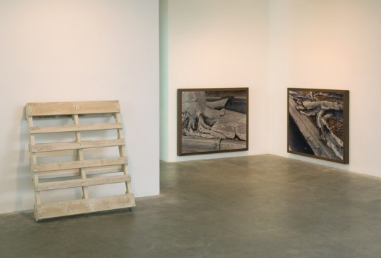 Installation View, 2007